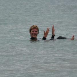 Kleine dolfijnen in de baai van het Dolphin Discovery Centre – West-Australië